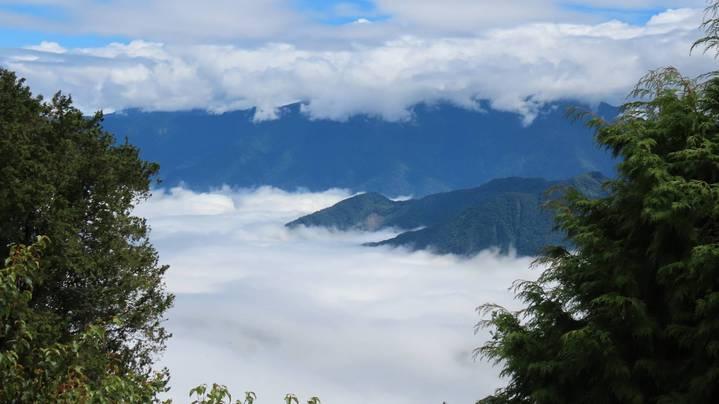 阿里山森林遊樂區小笠原山雲海美景。圖/蘇家弘提供
